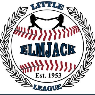 The Tadchiev Law Firm, P.C. is Sponsors Elmjack Little League